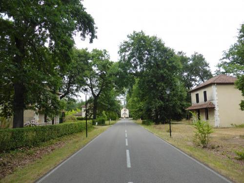 Allée centrale de Solférino, état actuel (cl. Ph. Cachau)